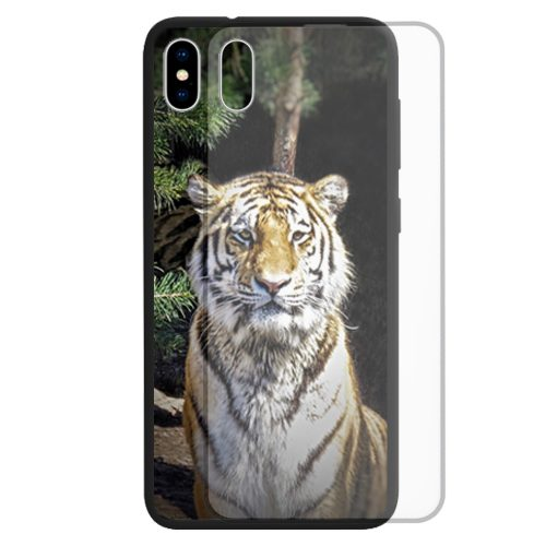Tiger Print Theme Tempered Glass Back Case Mobile Phone Cover